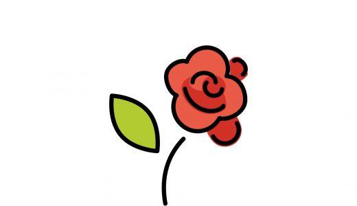 バラの咲く時期はいつ?おすすめの観賞スポットも紹介