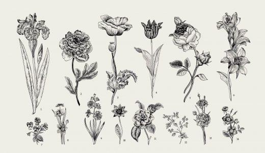 この花が苦手…10代〜60代の方に嫌いな花をアンケート
