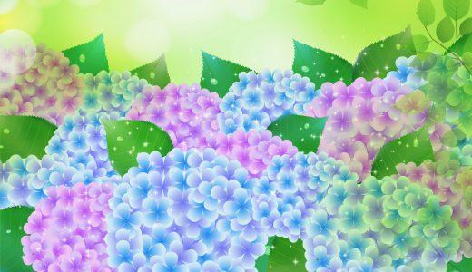 夏の花といえばコレだ!暑い時期だからこそ癒される花とは