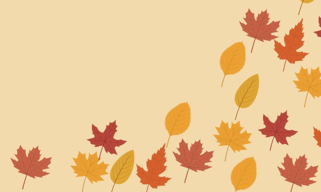 秋の花といえば