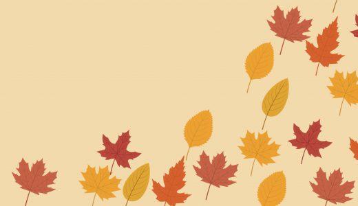 風情を感じる!秋らしい色合いを感じる秋の花といえばコレ