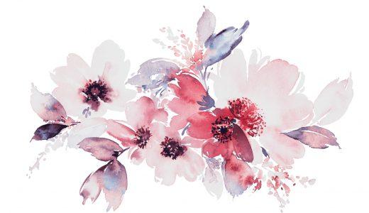 あたなが思う綺麗な花は何ですか?アンケート結果を公開