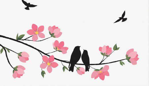 日本だから楽しめる!日本の春夏秋冬を楽しめるお花とは