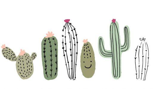 サボテンの花言葉は?同じ花言葉をもつ植物も紹介します