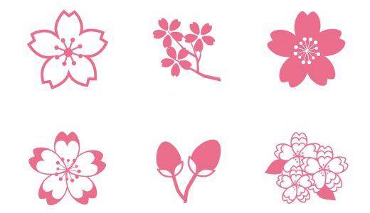 桜の寿命は長い?短い?寿命60年説に関しても徹底紹介