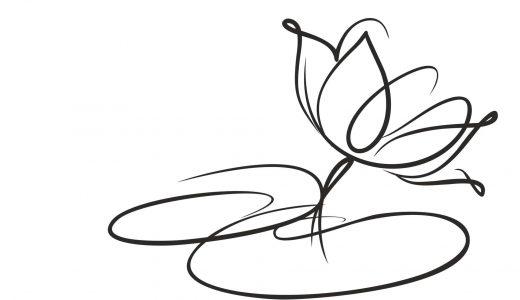 知りたい豆知識!献花のやり方や相場、マナーについて紹介
