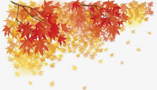 おすすめしたい!秋の遊び方、楽しみ方をアンケート結果