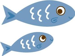 マレーシアの高級魚!アジアで最も高価な食用淡水魚エンプラウ