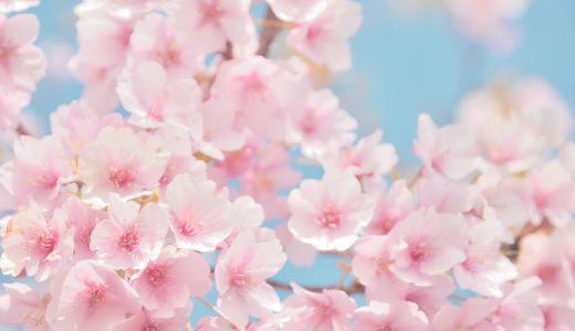 4月の行事やイベントのまとめ。知っておきたい豆知識も紹介